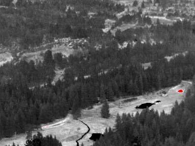 Wärmebild der PYROVIEW Infrarotkamera aufgenommen im Nationalpark. Die rote Stelle markiert einen lokalisierten Brandherd.